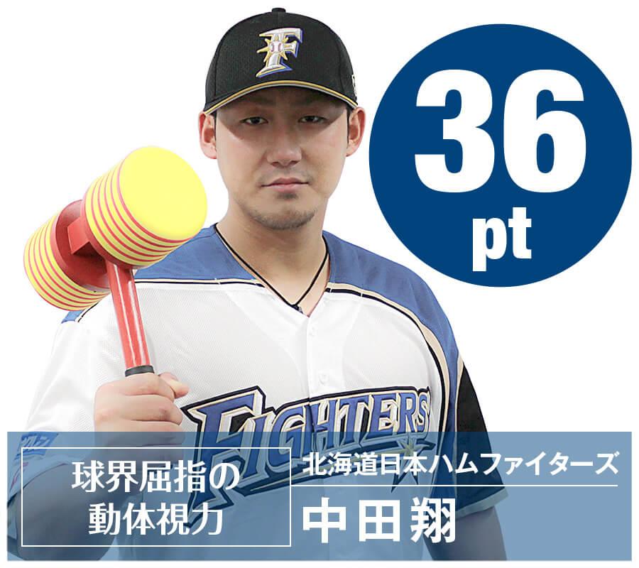 ベースボール中田翔